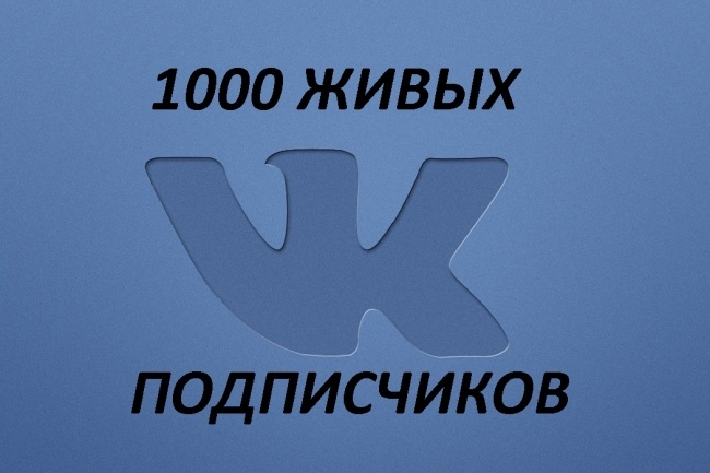 1000 subscribers VK + likes