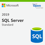 Microsoft SQL Server 2019 Standard Edition 15 users
