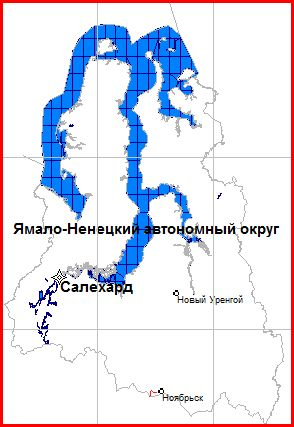 Map of the Yamal-Nenets Autonomous District for the GPS-navigation