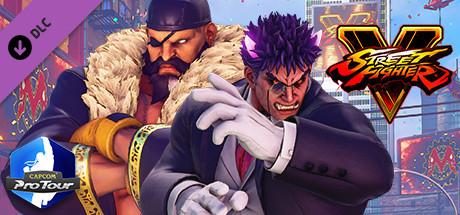 Street Fighter® V - Capcom Pro Tour: 2019 Premier Pass [Steam Gift|RU] 🚂 2019
