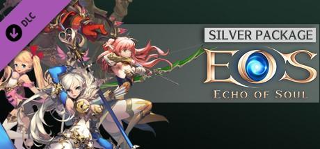 Echo Of Soul Silver Edition [Steam Gift|RU] 🚂 2019