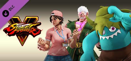 Street Fighter V - Story Costumes Bundle S1-S3 [Steam Gift|RU] 🚂 2019