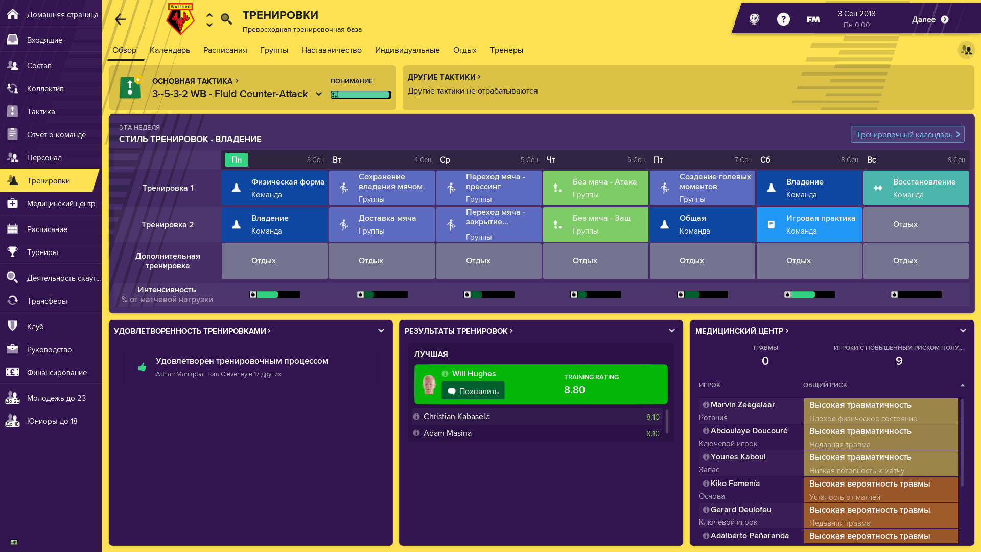 Football Manager 2019 (Offline Activation)