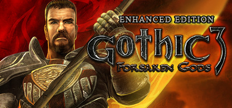 Gothic 3: Forsaken Gods Enhanced Edition (Region Free)