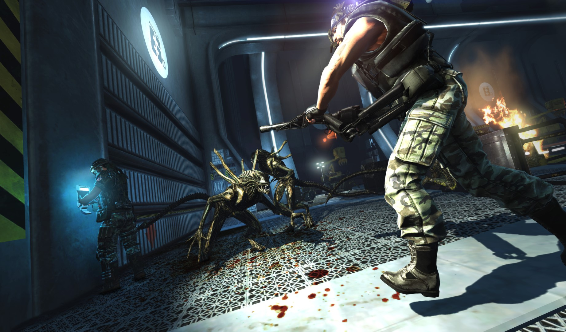 Aliens: Colonial Marines Collection. STEAM-key (RU+CIS)