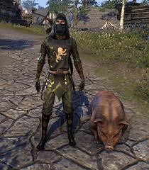 The Elder Scrolls Online - Bristlegut Piglet Pet (RARE)