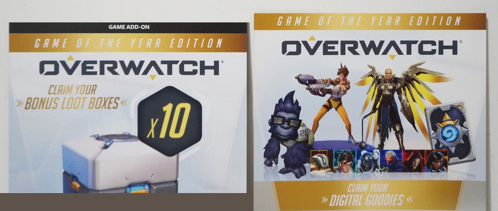 Overwatch: Game of the Year Edition (Battle.net Key)