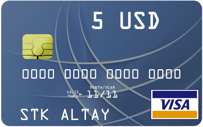 5 $ Visa Virtual Card to pay for Internet