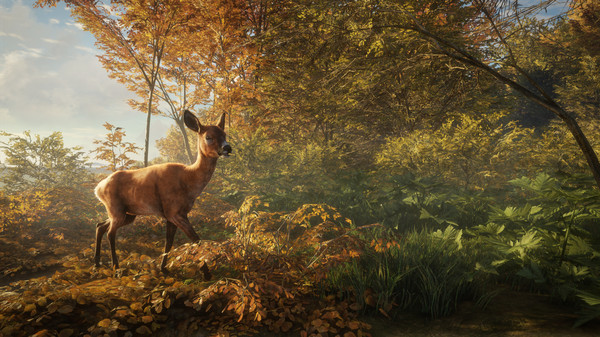 theHunter: Call of the Wild (Steam Gift RU/CIS)