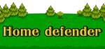 Home defender (Steam key/Region free)