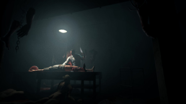 Outlast: Whistleblower DLC (STEAM KEY/ROW)