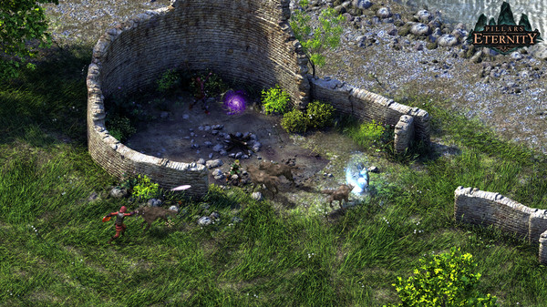 Pillars of Eternity-Definitive Edition STEAM KEY+BONUS