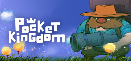 Pocket Kingdom (Steam key)