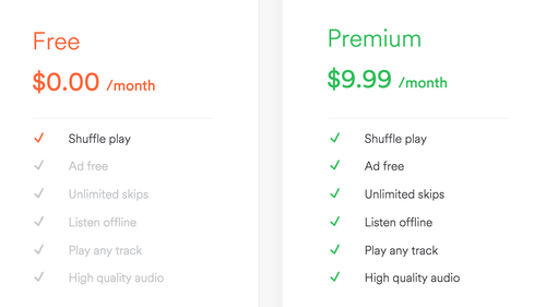 ✅ SPOTIFY PREMIUM FOR YOUR ACCOUNT | 6 MONTHS WARRANTY