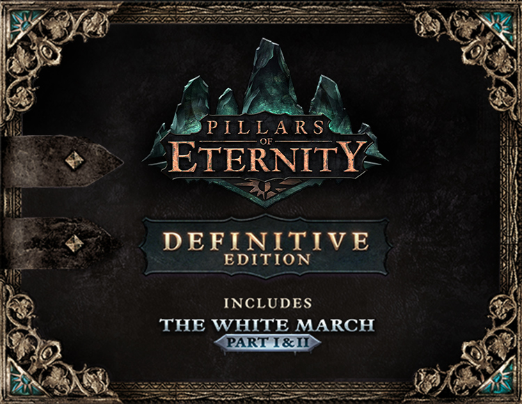 Pillars of Eternity Definitive Edition (STEAM) + Gift