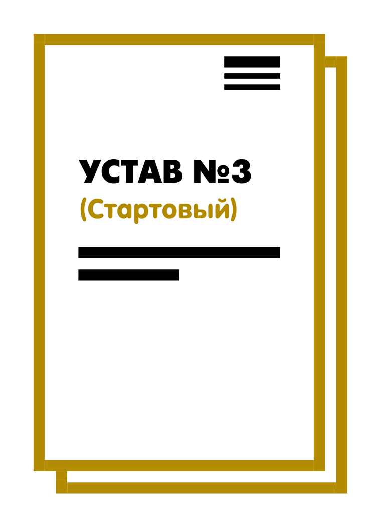 The Charter of LLC No. 3 (Starting) on 10 pages (2018)