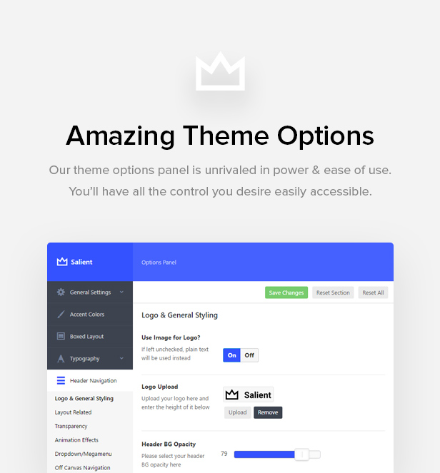 Salient - Responsive Multi-Purpose WordPress Theme