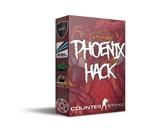 Phoenix CS:GO - 1 День