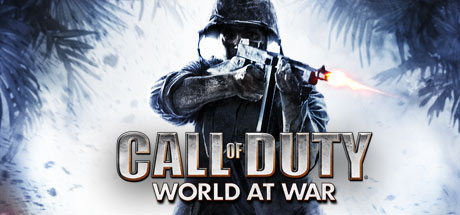 Call of Duty: World at War (Steam Gift RU)