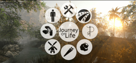 Journey of Life (Steam Gift RU)