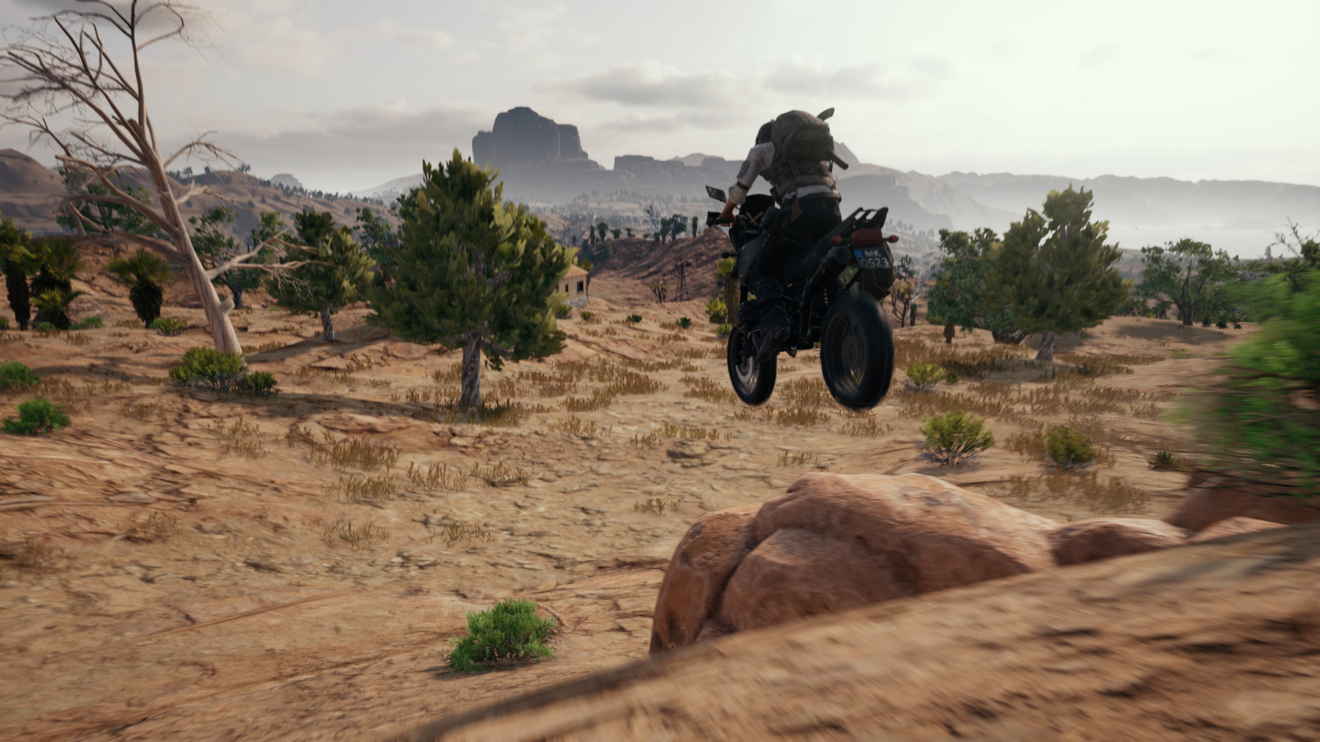 PLAYERUNKNOWN´S BATTLEGROUNDS (LICENSE KEYS / STEAM)