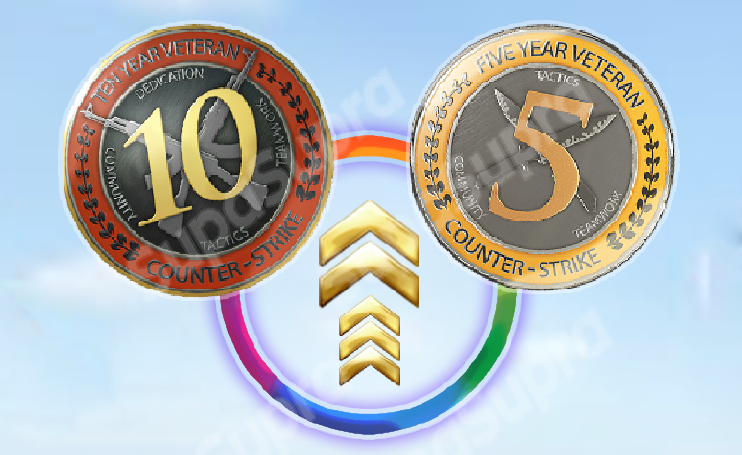 CSGO + 10-YEAR VETERAN COIN (15 YEARS ACC OLD) NO PRIME 2019