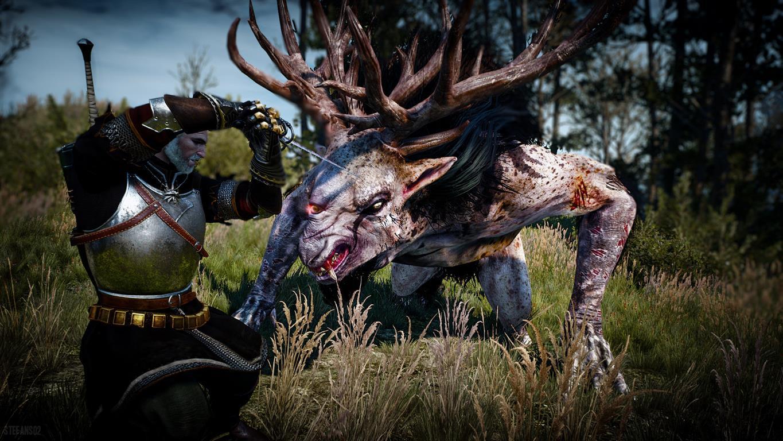 The Witcher® 3: Wild Hunt (GOG) 2019
