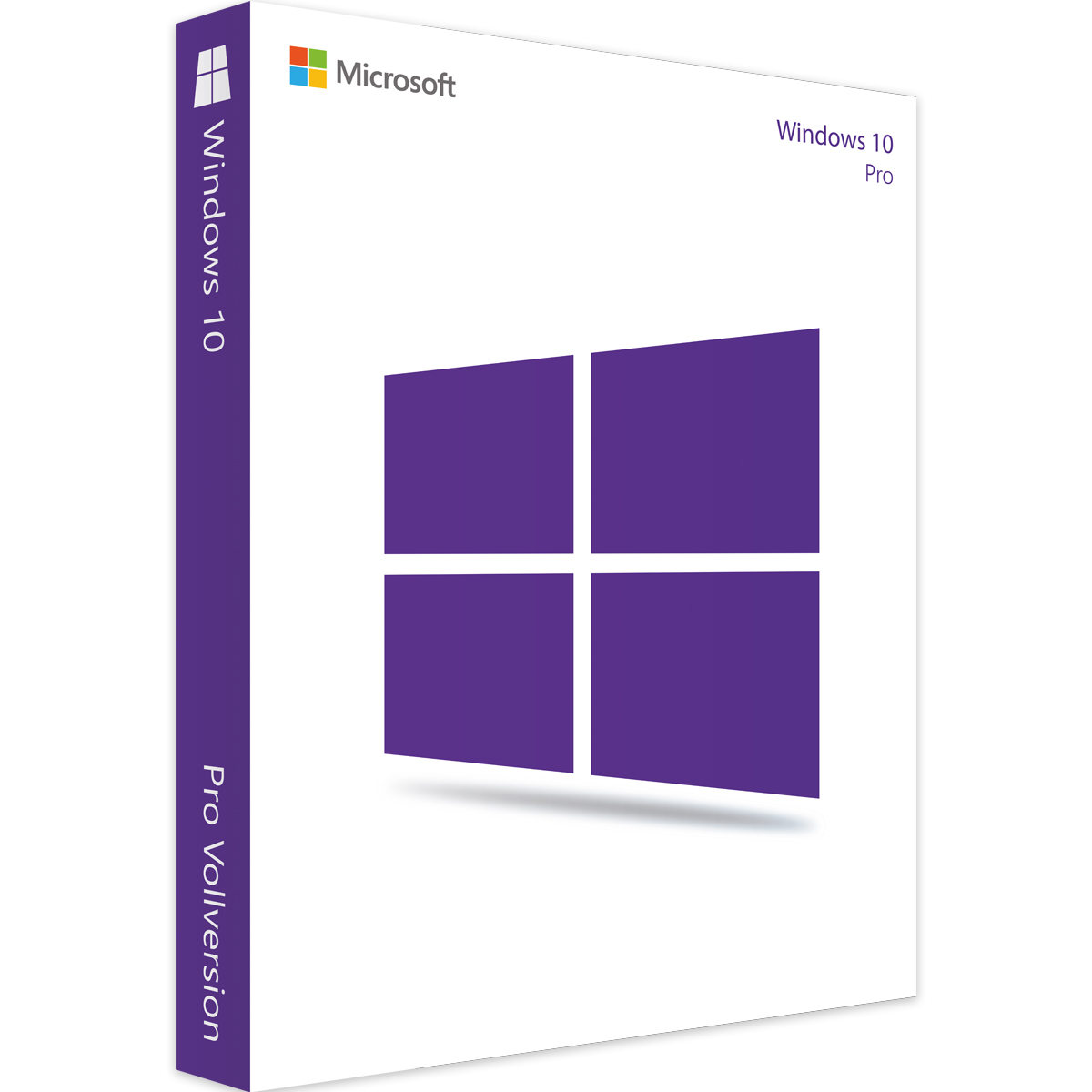 Windows 10 Professional 32/64 Bit 2019
