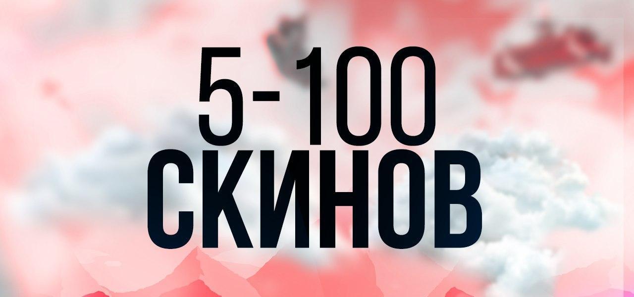 5-100 скинов
