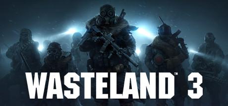 Wasteland 3   Steam Россия