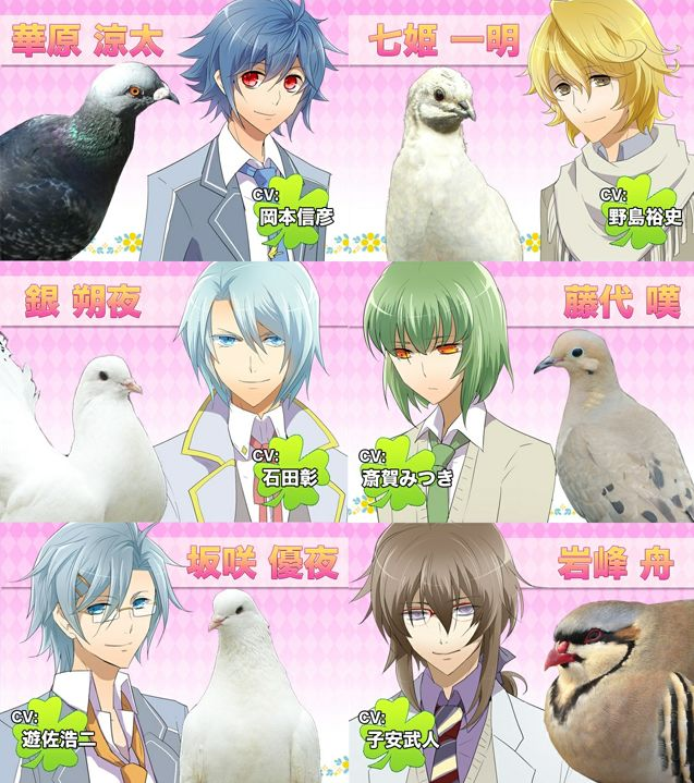 Hatoful Boyfriend (Steam Key, Region Free)